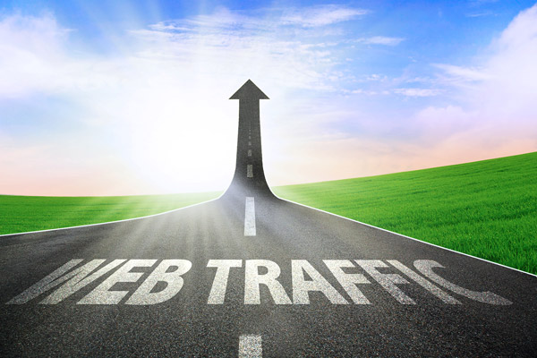 unique 10,000 REAL Human Visitors To Your Website No Fake Traffic Here