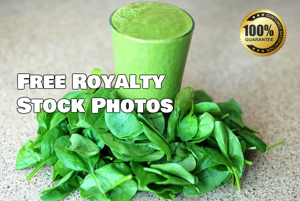 royalty free stock photos, stock images HD about food