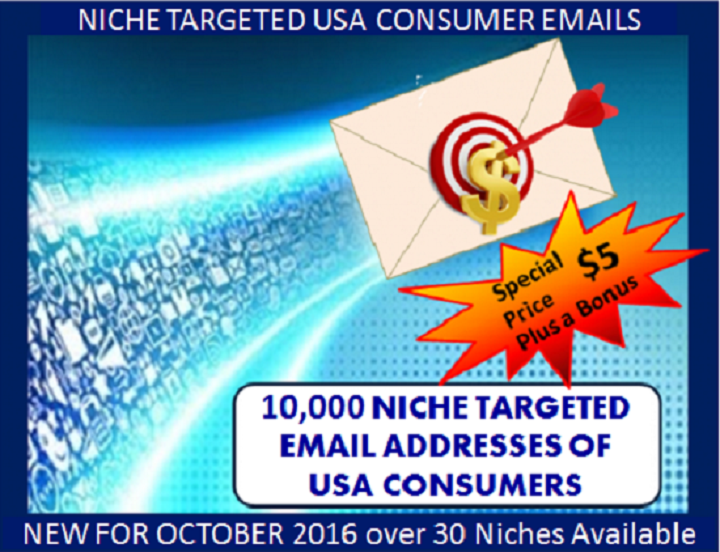 provide 10,000 Verified Opt-in NICHE Targeted USA Consumer Email Addresses