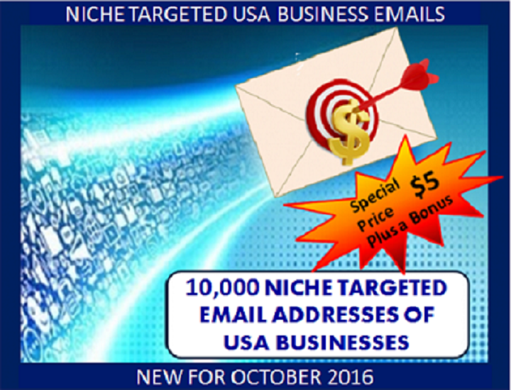 provide 10,000 Verified Opt-in NICHE Targeted USA Business Email Addresses