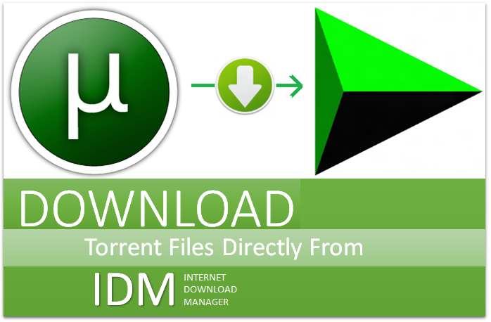 give your required torrent files