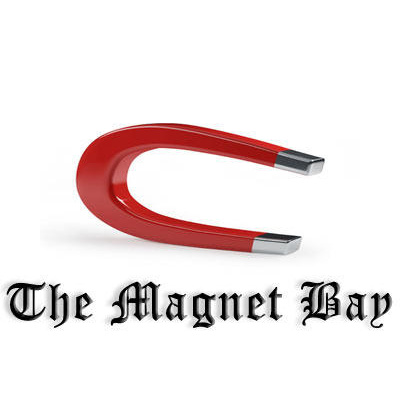 Setup a P2P magnet link search engin for you