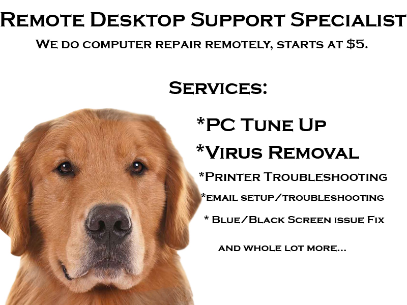 fix your computer issues from printer to virus and blue screen and slow performing computer