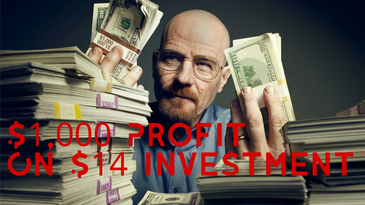 Teach You How To Earn $1000 + A Month From A $14 Investment