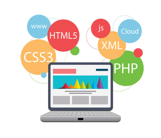 make a professional website for you