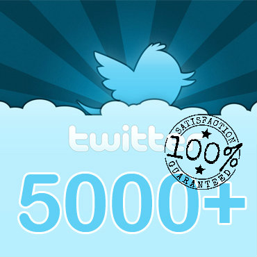 Give you 5,000 twitter Followers