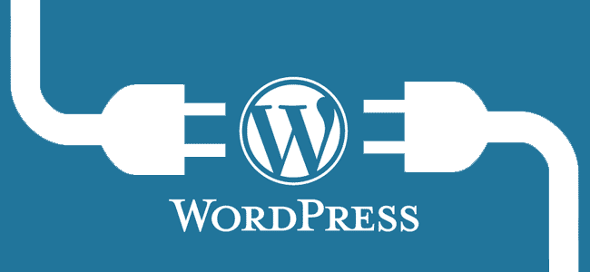 Develop a wordpress website for you