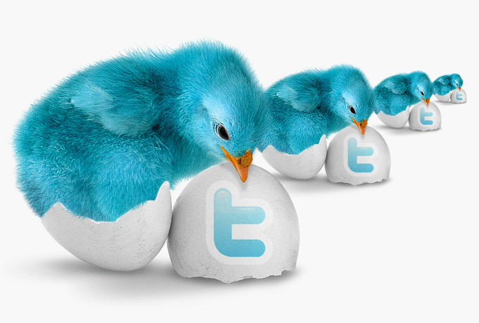 Gives you 2500 Guaranteed Twitter Real Followers.