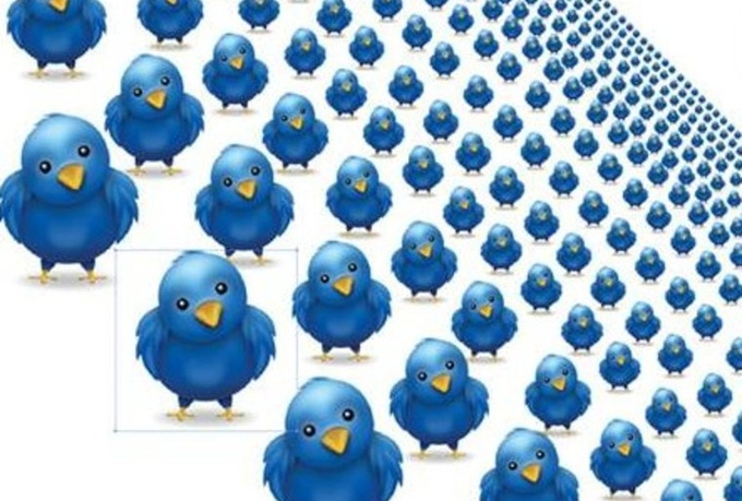 Grow Your Twitter Audience to 6000 Followers