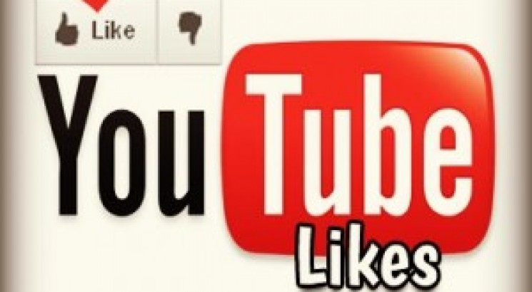 provide you 1000+ non dropped YouTube likes only