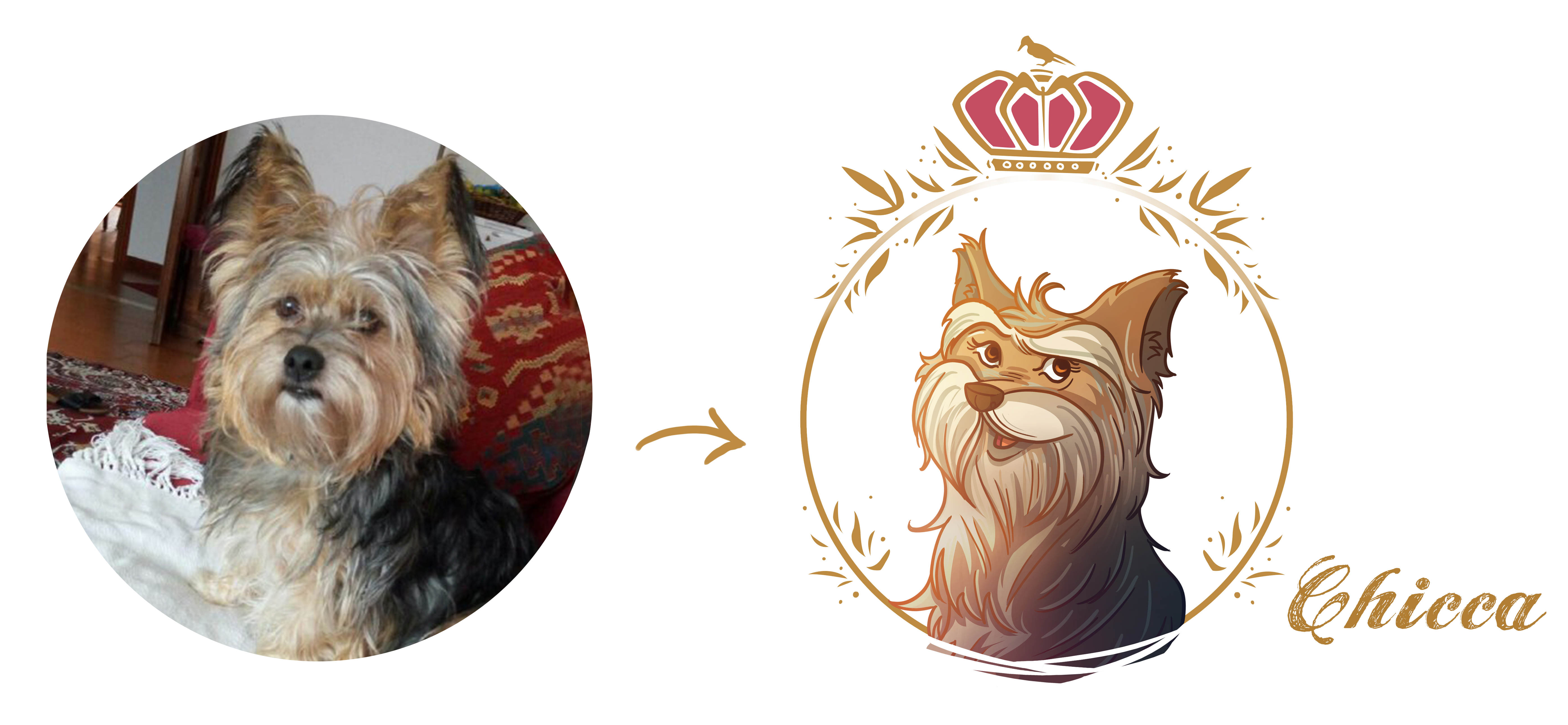 Draw Your Pet In My Illustration Style