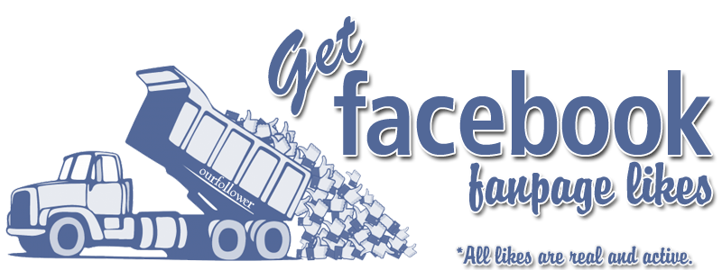 give you 500 faceook page likes