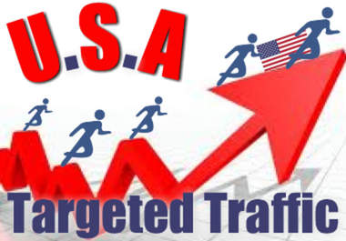 Drive 20,000 Search Engines (USA) Visitors with Proofs