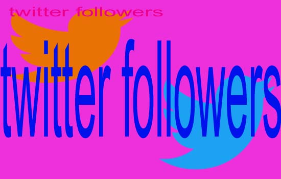 give you 1000+ twitter FOLLOWERS