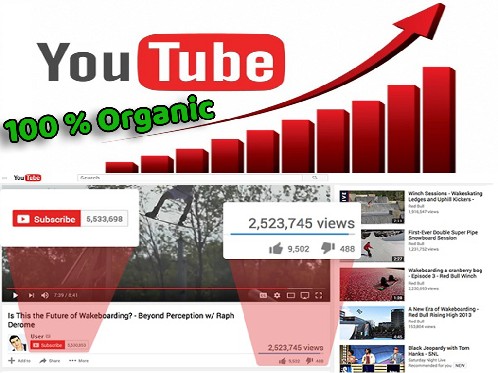 15,000+ Organic YouTube Views  for $25