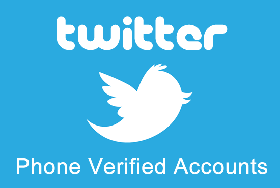 Provide 10 High Quality Twitter Accounts  in 48 hours