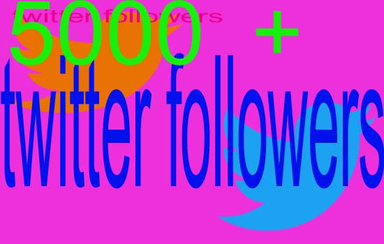 give you Real 5000+ twitter Active followers