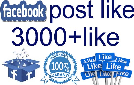 give you 3000+ nondrop facebook post likes