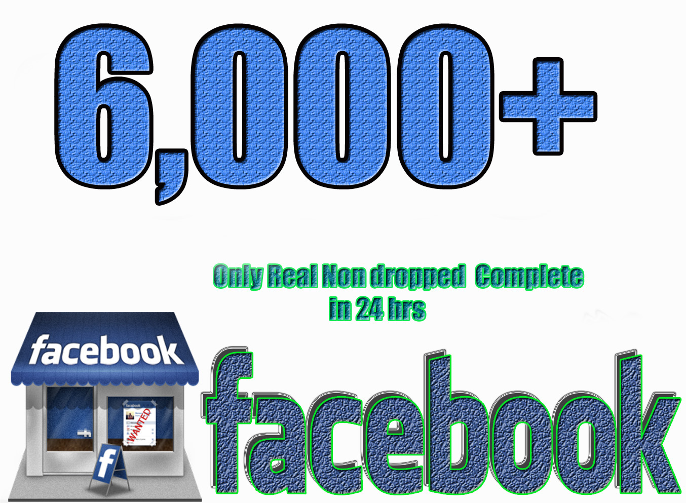give you 6,000 facebook non drop (real) page likes