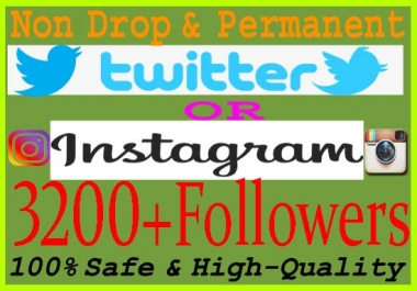 Give you 3200+ Real Instagram Or Twitter Followers