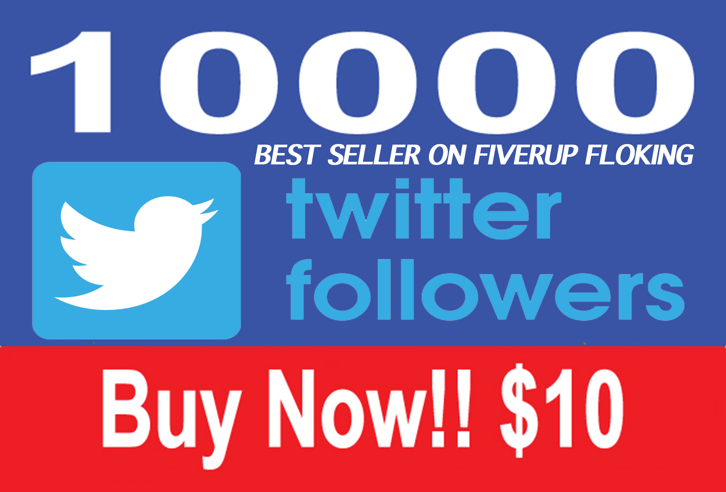 Give you 1,000 Real And GENUINE USA Twitter Followers instant