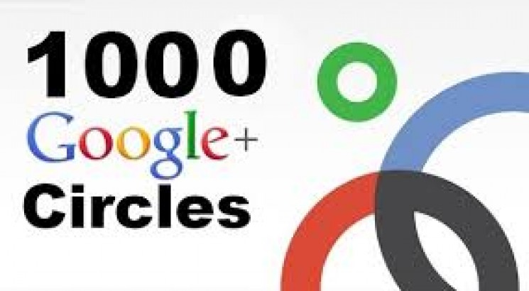 Give You 100% Real & Non drop 1000+ GOOGLE Plus Followers