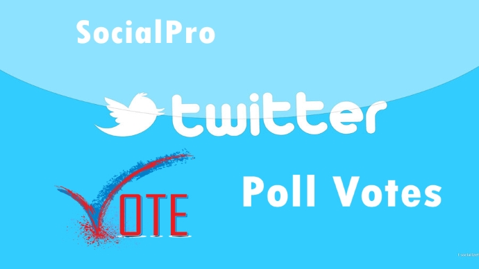 Give you 600+ Twitter Poll Votes Superfast! BEST PRICE