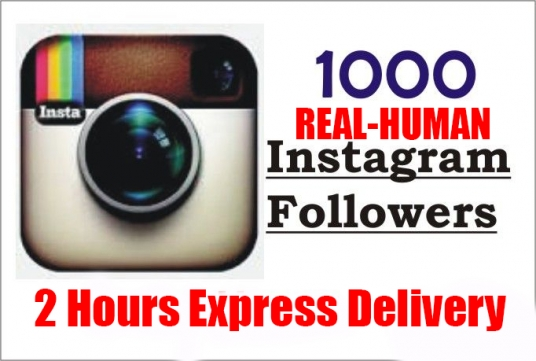 give You 1000 Intagram followers