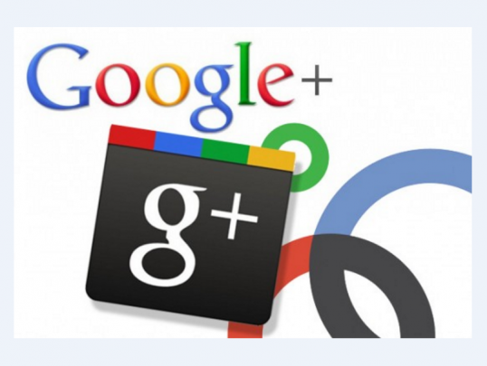 give you 300 google plus followers or circles