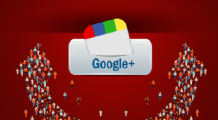 give you 1000 google plus followers or circles real
