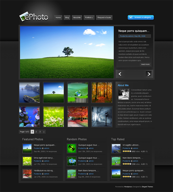 Give You WordPress Premium Themes to Look More Professional