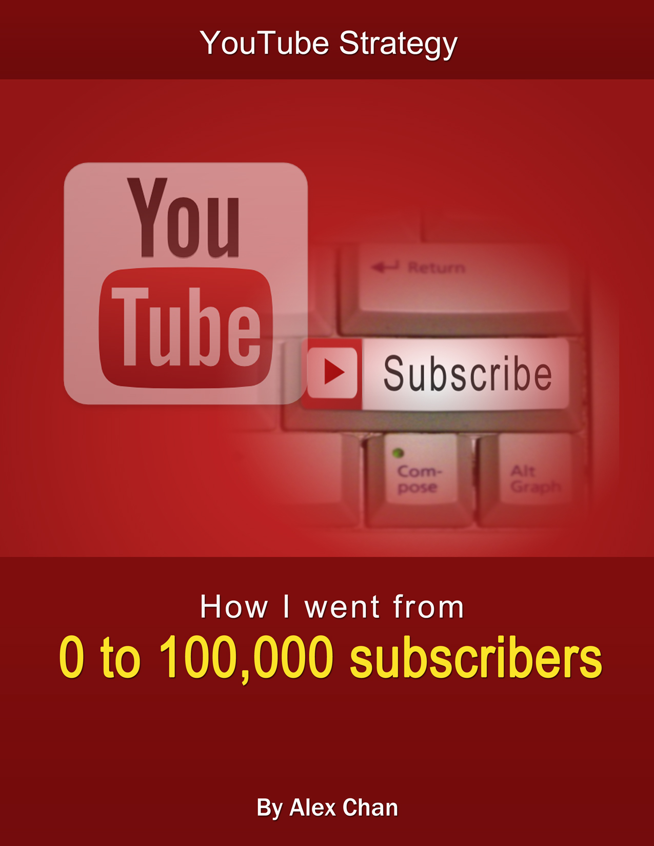 show you how I went from 0 to 100,000 subscribers (Guide) YouTube Strategy (Book)