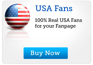 Give you 200+ USA Real & Active Facebook Fan Page likes