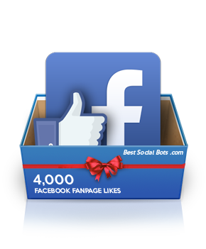 Provide you 4000+ Facebook Fan page Likes (Non Drop)