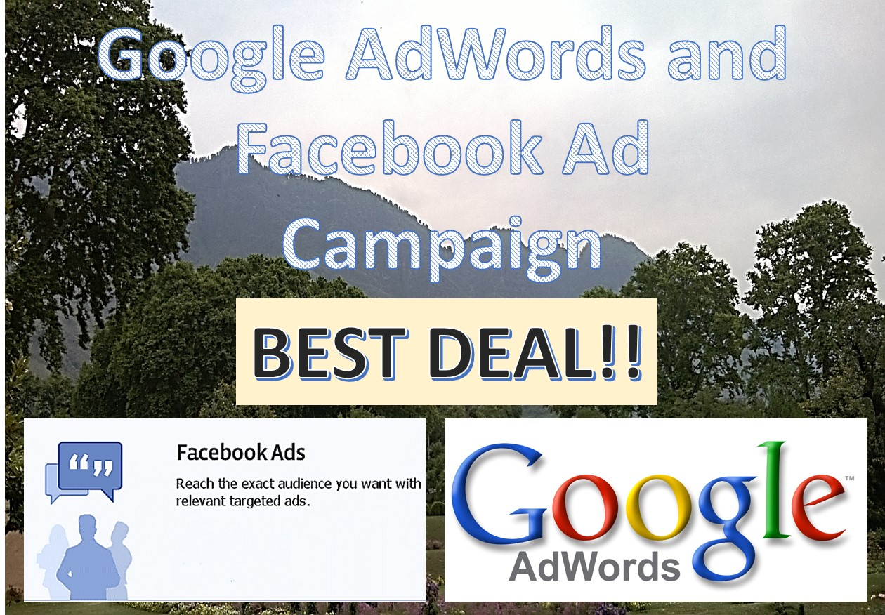 Create an effective Facebook or AdWords Ad campaign