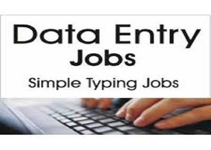 Show You How To Make Up To 3000 Dollars  Monthly Doing Data Entry Jobs Online