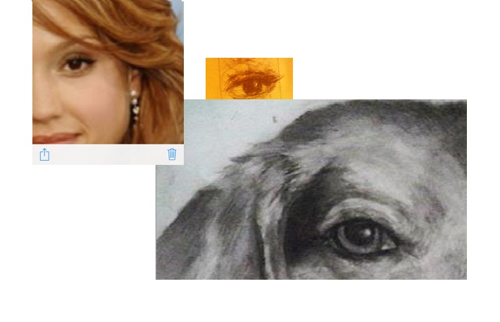 Create a quick 3D sketch of any eye for