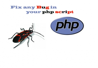 fix any bug in your php code