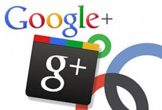deliver 200++ Google plus Circles followers Real Human to seo rock up your high rank on google