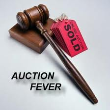 provide you with a Auction Website PHP Script (your own auction website like eBay)