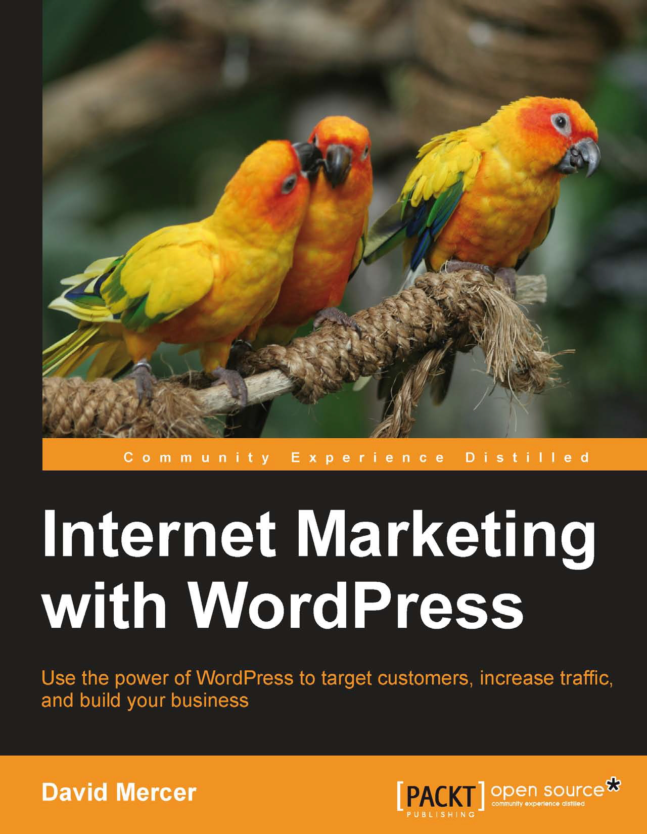 teach and give you internet MARKETING with wordpress