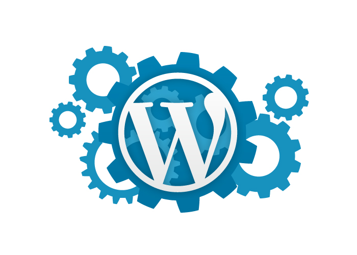 fix your Wordpress CSS Issue