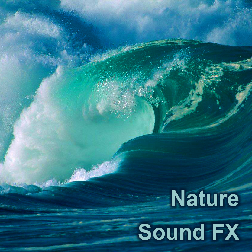 provide 500mb of Nature Sound Effects Samples