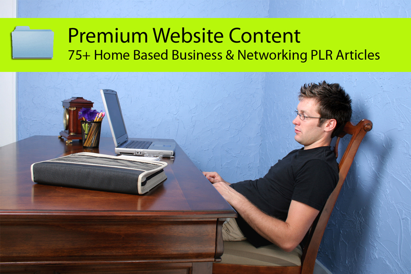 send you 75 Home Business and Networking PLR Articles