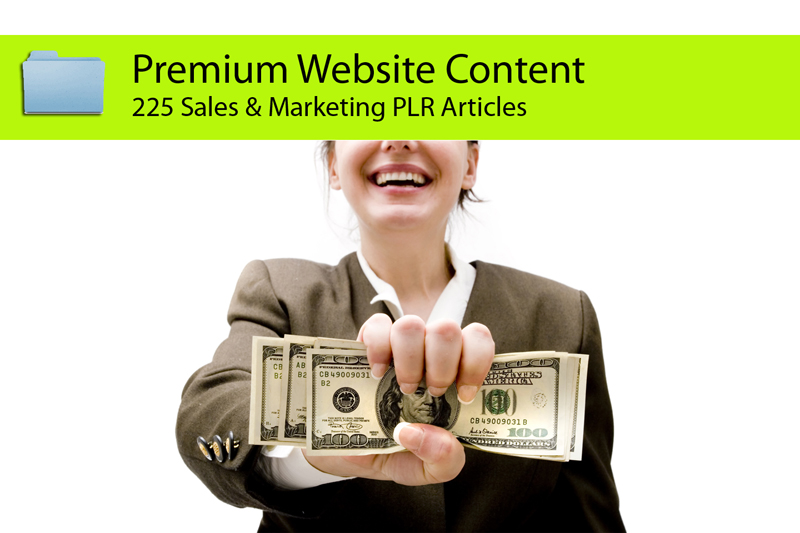 Send you 225 Sales and Marketing PLR Articles