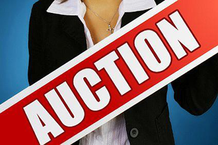 list of properties in Auction for your preferred zip code