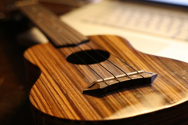 teach you to play at least one song on the Guitar/Ukulele in a day! for $2