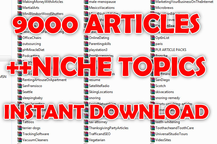 give you 9000 PLR Articles