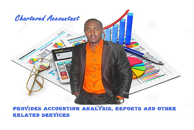 do your accounts, financial analysis and reports