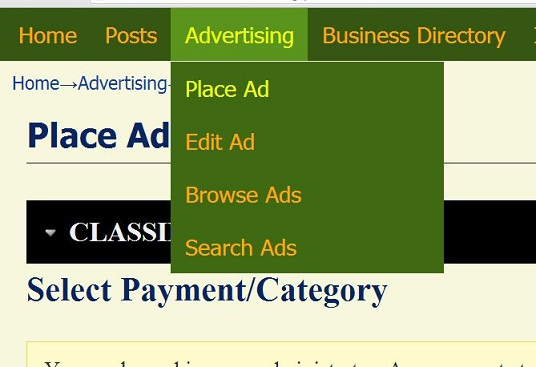 Build a website where business owners can place advertise by making payment